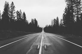 Images Gratuites : paysage, la nature, forêt, noir et blanc, route ...